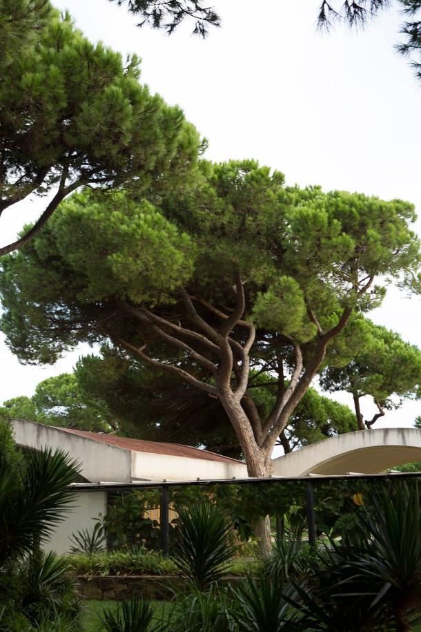 OPENHOUSE-MAGAZINE-PICNIC-MESSY-MEAL-KINFOLK-LA-RICARDA-GATHERING-BARCELONA-2014-FOTO-MARILUZ-VIDAL-098